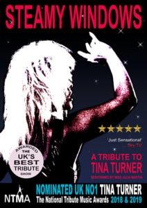 Tina Turner - Tribute Night